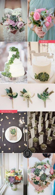 LOVE a succulent! Stylish Succulents – Wedding bouquets, flowers & corsages - Juno & Joy