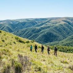 Check out the new Doringnek Hiking Trail next time you're at the Addo Elephant National Park Hiking Trails, The Outsiders, National Parks, Elephant, Adventure, Mountains, How To Plan, Check, Nature