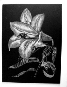 Hibiscus Scratchboard Flower -Artist Print on Etsy, $12.00 ...