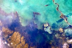 Alligator Bay at 25.204009,-80.568951, Florida Keys, USA. Picture: Cosmonaut Oleg Artemyev