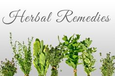 Herbal Remedies To Support Healthy Living on http://www.naturallifeenergy.com