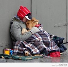 """A dog is the only thing on earth that loves you more than you love yourself.""  Be right back...going to go cry now."