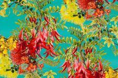 Pohutukawa and Kakabeak by Jane Galloway. Wall Art print from The Little Art Gallery, Tairua, Coromandel, NZ Nz Art, Wall Art Prints, Original Artwork, Art Gallery, Canvas, Flowers, Painting, Image, Artists