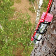Here's an interesting way to suspend a small geocache; fasten it to a cord with zip ties.  #IBGCp