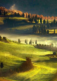 Tuscany foggy morning, farmland and cypress trees country landscape. Beautiful Photos Of Nature, Nature Pictures, Amazing Nature, Beautiful Landscapes, Beautiful Places, Fantasy Landscape, Landscape Photos, Landscape Photography, Nature Photography