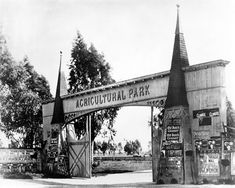 How Agricultural Park Became Exposition Park