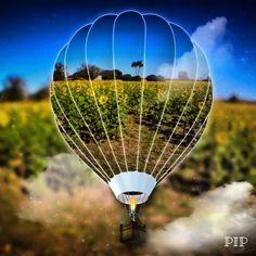 """""""Cada sonho que você deixa pra trás, é um pedaço do seu futuro que deixa de existir."""" Steve Jobs #ultimoferiadoantesdonatal #trabalharépreciso #meunomeétrabalho #sanguesuorefoto @vicky_photos_infantis https://www.facebook.com/vickyphotosinfantis http://websta.me/n/vicky_photos_infantis https://www.pinterest.com/vickydfay https://www.flickr.com/vickyphotosinfantis"""