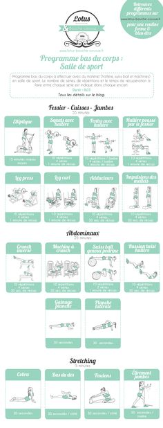 Programme bas du corps en salle de sport