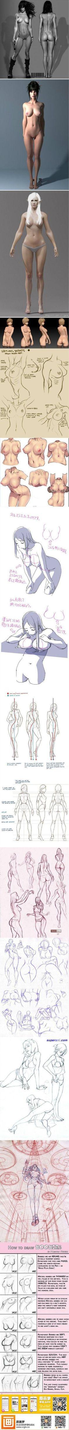 How to Draw the Female Face   Body anatomy. How to draw female body.: