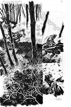 The Storm by Duncan Fegredo Comic Books Art, Comic Art, Example Of Comics, Mike Mignola Art, Comic Frame, Comic Kunst, Comic Panels, Black And White Drawing, Drawing Artist