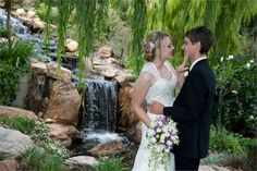 Ballara Waterfall - Ballara Receptions