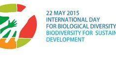 Celebrar a biodiversidade
