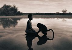 Gregory Colbert's wonderful images and films https://gregorycolbert.com/#!vision
