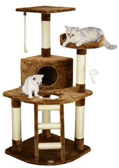 Top 5 Best Cat Tree For Your Kitty Condo Review. Please visit our website to learn more! #catfurniture#healthycat#happycat#bestmeow#pethealth#ilovecats#catlover