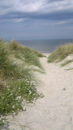 Pathway To The Sea Beach Life Paisajes Paisaje Marino Beach Scenes, Ocean Beach, Summer Beach, Beautiful Beaches, Land Scape, Beautiful World, Seaside, Landscape Photography, Places To Go
