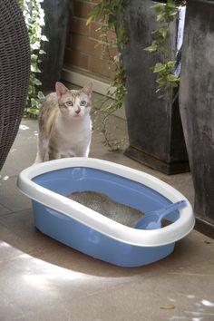Toilette per gatti SPRINT, con paletta e bordo igienico inclusi. disponibile in due diverse misure.
