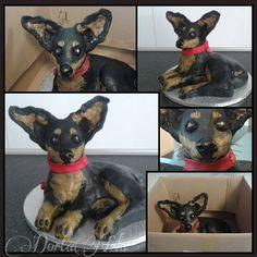 PRAGUE RATTER - DOG (Pražský krysařík)