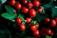 #red #green contrast