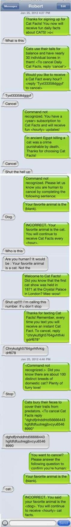 And, of course, the Cat Facts Approach: | The 23 Best Ways To Handle A Text From The Wrong Number.. LAST ONE, TOO FUNNY!!!