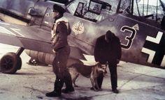 Luftwaffe - Oberleutnant Hermann Segatz (Staffelkapitän of His aircraft displays the Tyrolean eagle emblem. Me 109, Ww2 Aircraft, Fighter Aircraft, Military Aircraft, Luftwaffe, Eagle Emblems, Focke Wulf, Ww2 Planes, Fighter Pilot