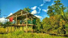 Palafitta 2 Photos, Landscapes, Cabin, House Styles, Home Decor, Paisajes, Scenery, Decoration Home, Room Decor