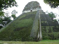 Tropisch Regenwoud Tikal Guatemala