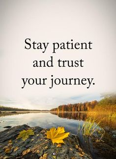 Stay patient and trust your journey. #powerofpositivity #positivewords #positivethinking #inspirationalquote #motivationalquotes #quotes #life #love #hope #faith #respect #patient #journey #path