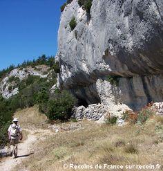Randonnées, forêt des Cèdres, Vaucluse