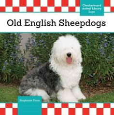 Shares information about Old English sheepdogs, including what they are like…