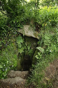 Holy Wells of England: Chapel Downs Holy Well, Sancreed, Cornwall