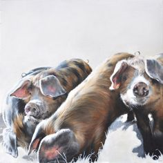 Vicky Palmer Three Little Piggies oil on canvas 23.5 x 23.5 ins (60 x 60 cms) £1,950  #art #artist #painting #painter #farm #farmanimals #hounds #hunting #buyart #interiordesign #countrylife #country #countryside #pigs #dogs #cows #foxandhound