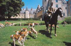 Chateau de la Verrerie - Hunting in France
