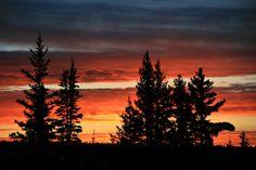 Grand Mesa Sunset. Near Grand Junction, CO. Beautiful Sunrise, Sunrises, Colorado, Celestial, Outdoor, Outdoors, Aspen Colorado, Sunrise, Outdoor Games