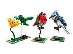 Build and display these authentic, well-loved birds!