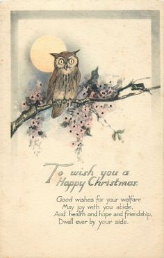 owl, moon, blossom