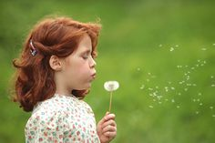 Portrait of a seven-year-old girl with natural red hair, blowing the seeds from a common dandelion, Taraxacum officinale.