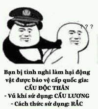 ・゜-: ✧ :- 𝓘 𝓵𝓸𝓿𝓮 𝓶𝔂 𝓵𝓲𝓯𝓮 𝓫𝓮𝓬𝓪𝓾𝓼𝓮 𝓶𝔂 𝓵𝓲𝓯𝓮 𝓲? Chinese Meme, Panda Meme, Interesting Meme, Troll Meme, Drawing Meme, Funny Times, Cute Memes, Funny Stories, Cute Stickers