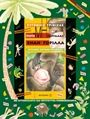 Group Of Companies, Good Books, Baseball Cards, Children, Cover, Sports, Young Children, Hs Sports, Boys