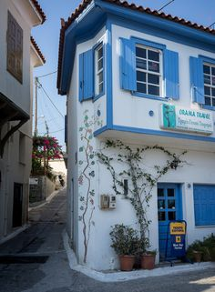 Samos Island, Karlovasi, Aegean_ Greece