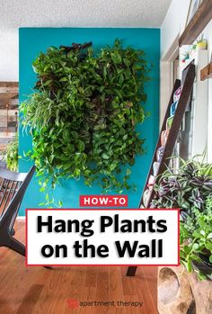 Vertical Gardens Lush vertical gardens and hanging plants on the wall can add greenery to any room (and indoor plants are all the rage) or outdoor space. Letting them crawl up to new heights. - Remember when vertical gardens first hit the scene Plant Wall Diy, Indoor Plant Wall, Plant Decor, Indoor Plants, Hang Plants On Wall, Plants On Walls, Wall Garden Indoor, Hanging Plants Outdoor, Hanging Plant Wall