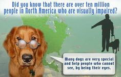 Did you know that there are over ten million people in North America who are visually impaired?