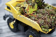 8 Fun Container Garden Projects Kids Will Love