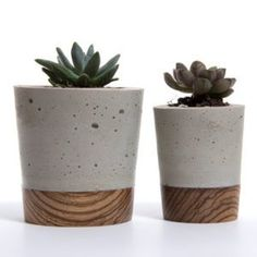 concrete and wood planters
