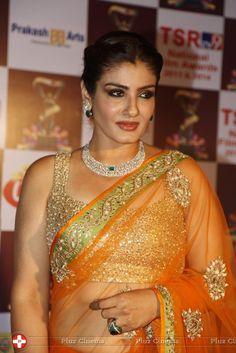 Raveena Tandon Hot in Saree at TSR TV9 National Film Awards Photos