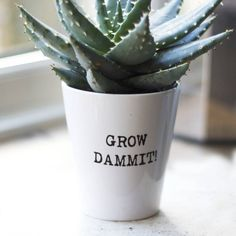 Personalised Typewritten Quote Plant Pot