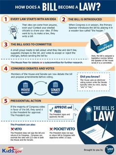 This graphic shows the complicated process that turns a bill into a law. I chose this graphic because it highlights some of the things that political science focuses on, the functioning of governments. Government Lessons, Teaching Government, Teaching Social Studies, Teaching History, Teaching Economics, Economics Lessons, History Education, Teaching Resources, Political Science Major