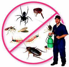 We are really thankful for its phenomenal and high-yielding pest control services.