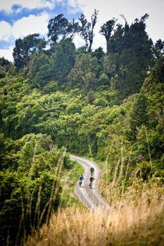 Motu Road trail