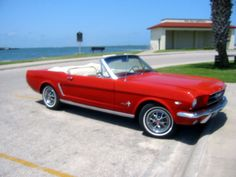 1964 Mustang - Google Search