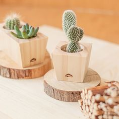 [Succulent magnet tub] manual fleshy wood flower / without plant storage - Shop mifo wood industrial arts - Plants - Pinkoi Wooden Planters, Planter Boxes, Wooden Projects, Wood Crafts, Planting Succulents, Planting Flowers, Flower Plants, Succulent Plants, Plant Drawing